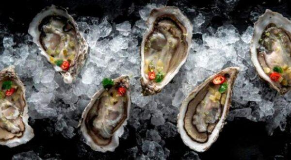 Resultado de imagen de Galway Oysters (ostras)